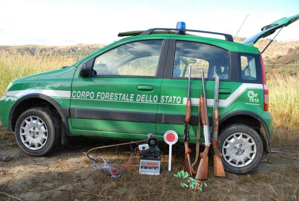 ALTRO DURO COLPO ALLA LEGGE MADIA DAL TAR ABRUZZO. L'accorpamento dei forestali ai Carabinieri potrebbe essere incostituzionale.