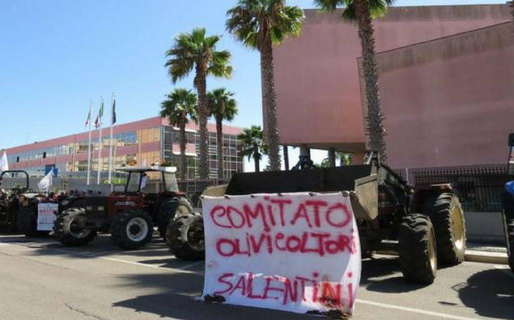 XYLELLA, CONTINUA LA PROTESTA IN ATTESA DELLE DECISIONI UE