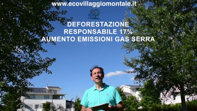 Ecopillola n. 10 La Riforestazione