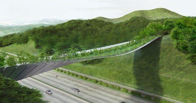 ponte-verde