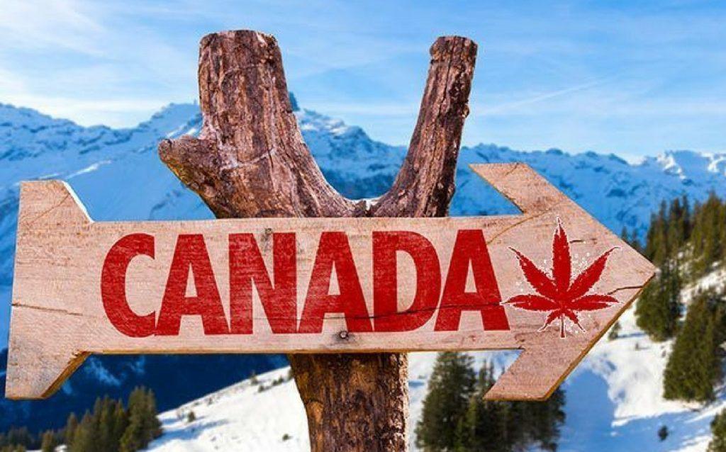CANADA, MARIJUANA. ECCO IL PIANO TRUDEAU
