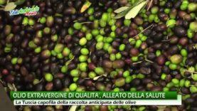 OLIO EXTRAVERGINE DI QUALITA', ALLEATO DELLA SALUTE