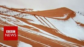NEVE SUL SAHARA, SPETTACOLO ALL'EQUATORE. VIDEO