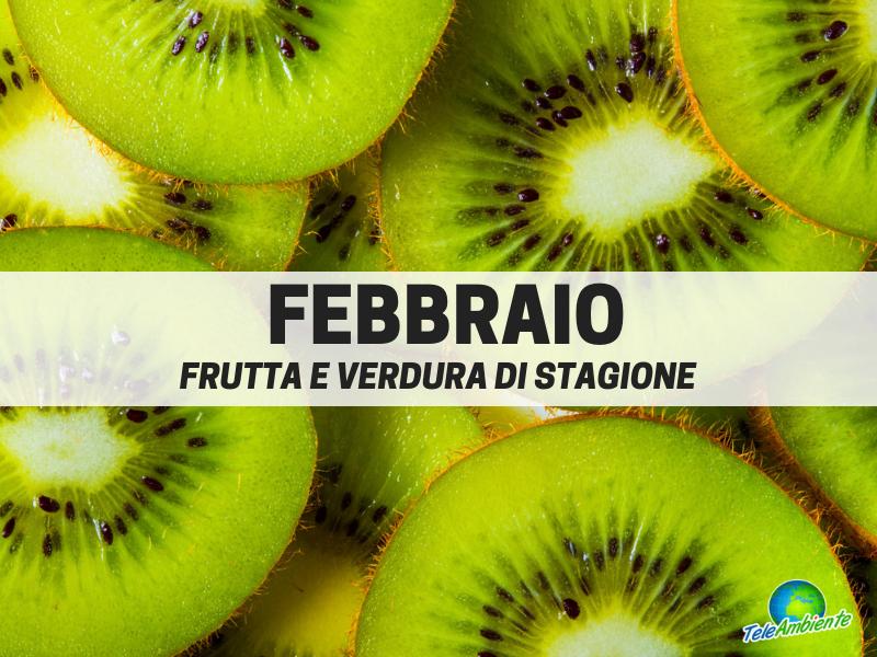 Frutta e verdura di stagione, Febbraio. Cosa mettere nel carrello della spesa