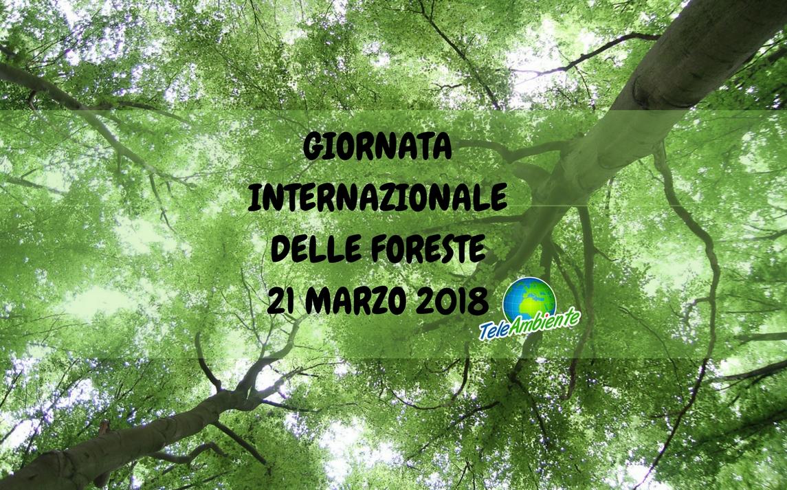 GIORNATA INTERNAZIONALE DELLE FORESTE 21 MARZO 2018. INIZIATIVE NELLE SCUOLE