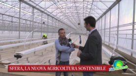 SFERA, LA SERRA WATERFOOD. UNA START UP PER UNA NUOVA AGRICOLTURA SOSTENIBILE. VIDEO