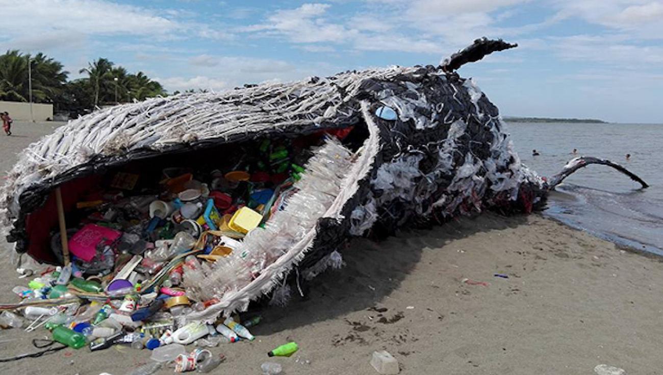 Risultati immagini per inquinamento plastica