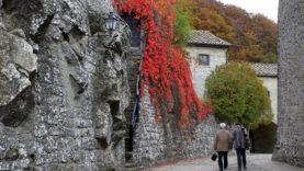 Montanari Veronica – Parco Naz delle Foreste Casentinesi, Monte Falterona, Campigna