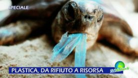 PLASTICA, DA RIFIUTO A RISORSA. GIORNATE DELLA RICERCA COREPLA