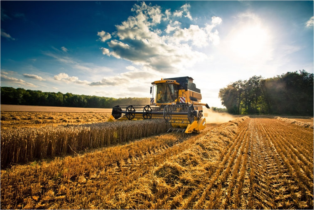 AGRICOLTURA DI PRECISIONE, SARDEGNA AREA PILOTA PER RIDUZIONE 20% AGROFARMACI