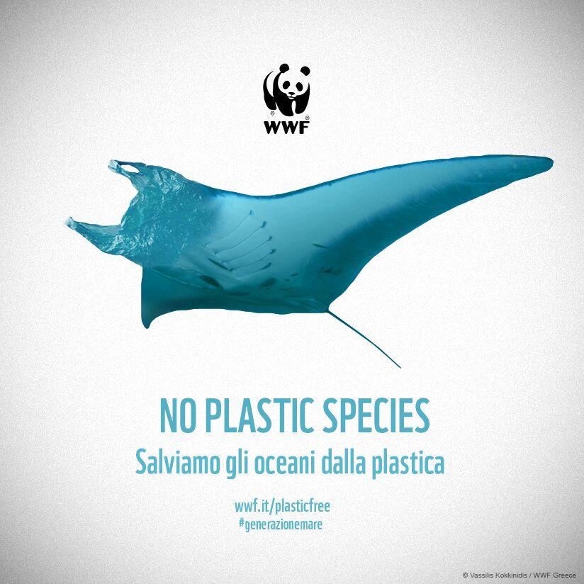 WWF, NUOVE SPECIE MARINE COMPAIONO IN MARE. MA NON E' UNA BUONA NOTIZIA