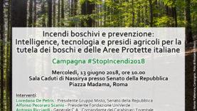 Roma 13 giugno 2018 – #StopIncendi2018