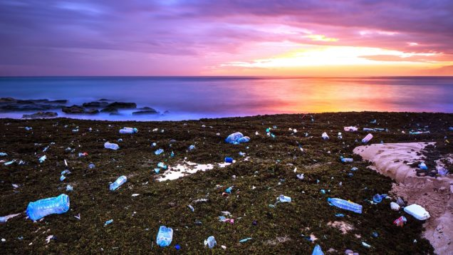inquinamento-oceani