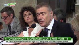 #STOPINCENDI2018, LA CAMPAGNA PER LA TUTELA DEI BOSCHI E DELLE AREE PROTETTE ITALIANE