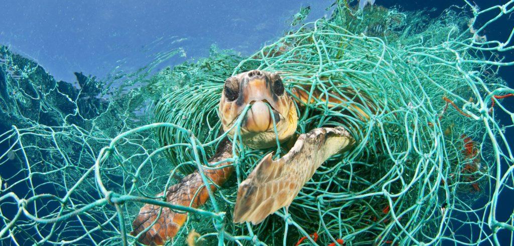 """GIORNATA OCEANI, APPELLO ONU: """"SE NON CAMBIAMO ROTTA, PRESTO IN MARE PIU' PLASTICA CHE PESCI"""""""