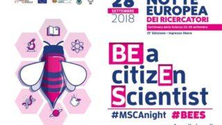 BEES_Frascati_Scienza-640×426