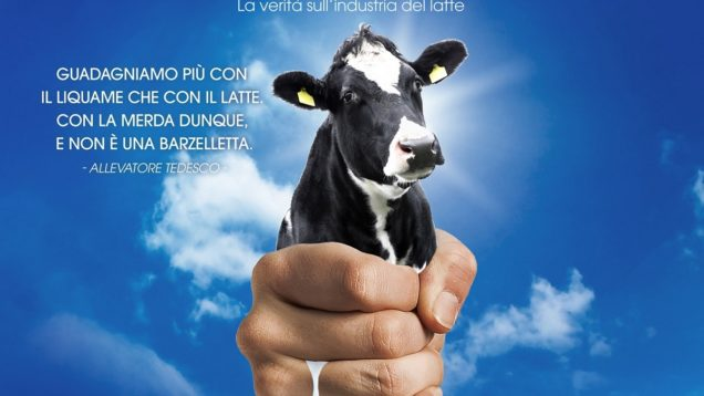 The Milk System locandina