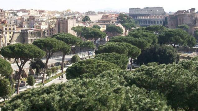 Trattati-di-Roma