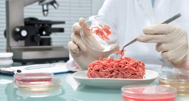 carne-laboratorio-640×342