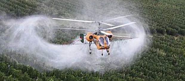 prosecco-e-pesticidi-quando-i-soldi-valgono-piu-della-salute-dolcevitaonline-it_1089129