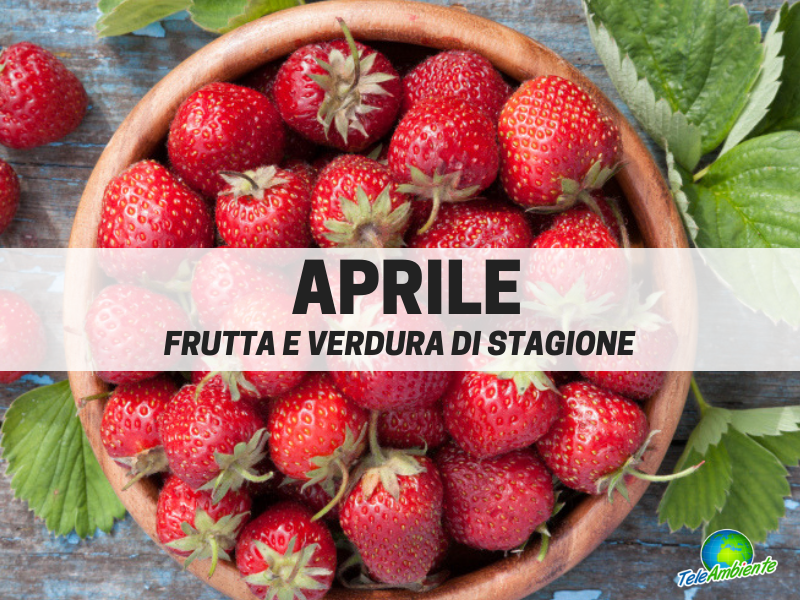 Frutta e verdura di stagione, Aprile. Cosa mettere nel carrello della spesa