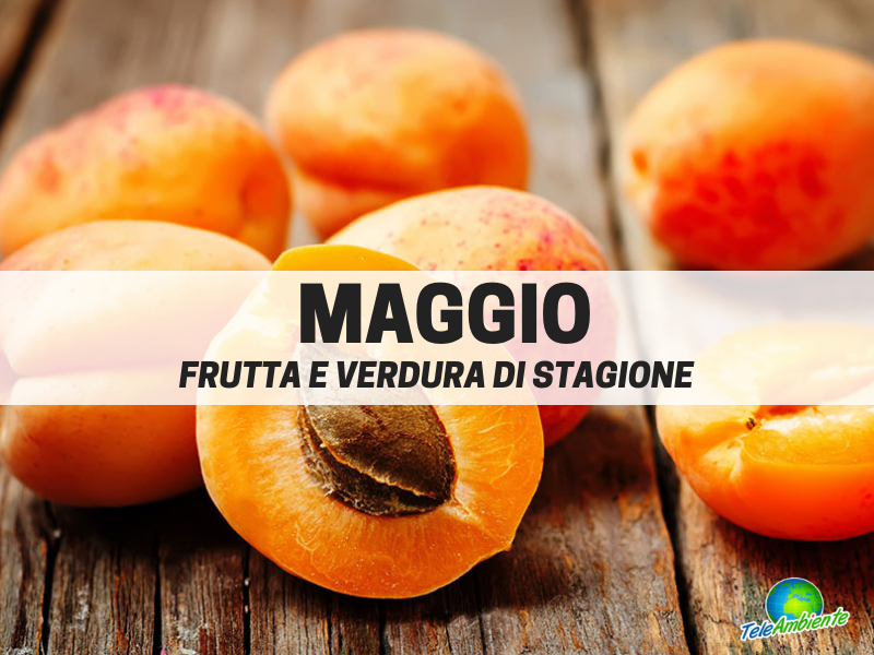 Frutta e verdura di stagione, Maggio. Cosa mettere nel carrello della spesa