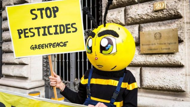 GREENPEACE: STOP AI NEONICOTINOIDI IN UE, ?SCIOPERO? DELLE API