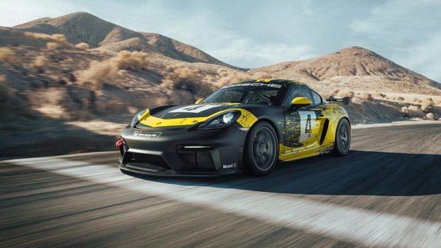 Porsche-lino-e-canapa