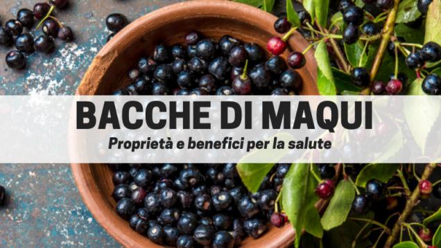 BACCHE DI MAQUI