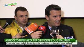 AGRICOLTORI IN PIAZZA PER DIFENDERE L'OLIO ITALIANO. NEL 2019 OLIO STRANIERO IN 2 BOTTIGLIE SU 3