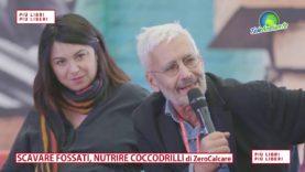 ZEROCALCARE, SCAVARE FOSSILI NUTRIRE COCCODRILI. PIÙ LIBRI PIÙ LIBERI 2018