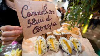 canapa mundi food