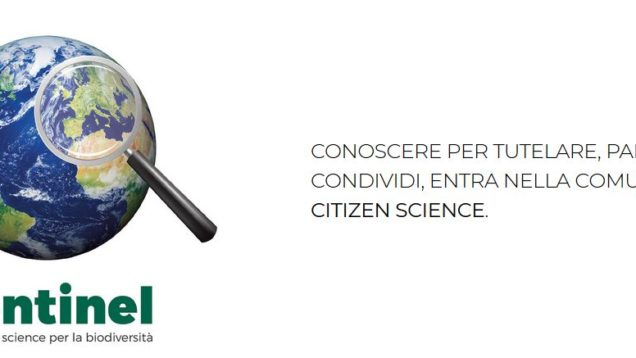 biodiversità citizen science