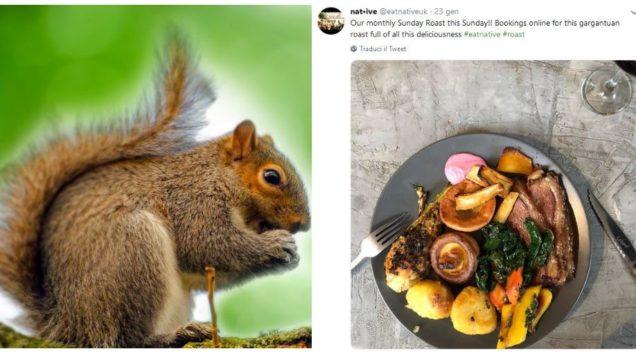 scoiattolo ristorante