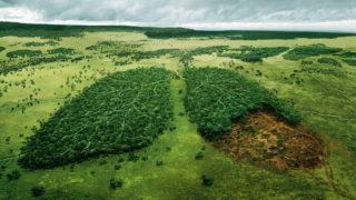 consumo di suolo ispra