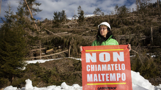 clima greenpeace
