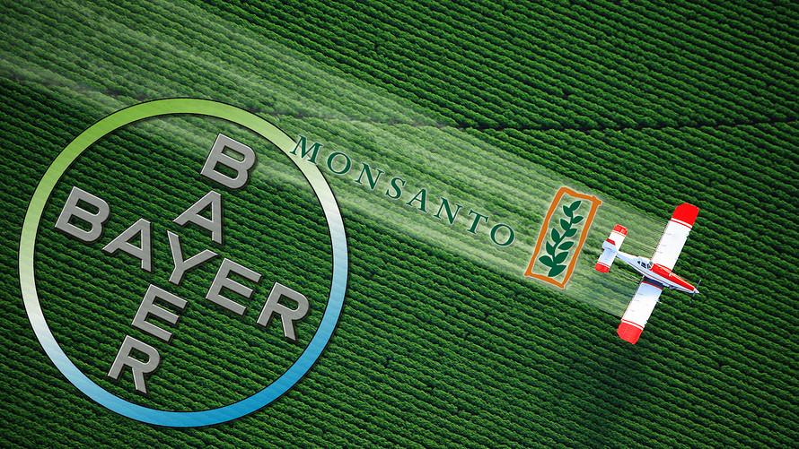 Glifosato, seconda condanna per Bayer-Monsanto. L'erbicida è cancerogeno