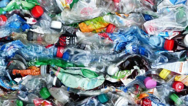 plastica stop 2021