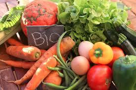 Agricoltura biologica, cosa prevede il provvedimento all'esame del Senato