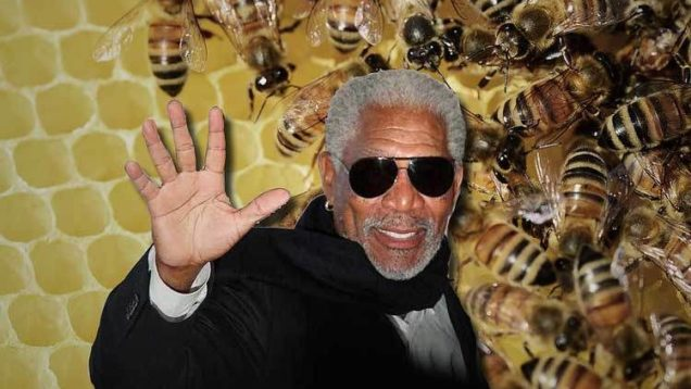 morgan freeman api