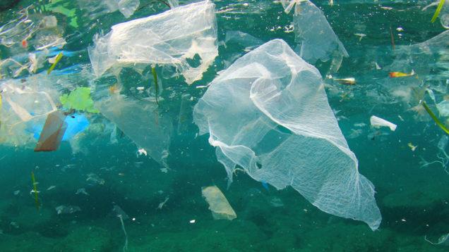 plastica salvamare