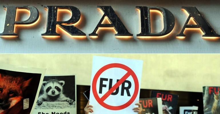 Animali, Prada dice addio alle pellicce. Stop dalle collezioni Primavera/Estate 2020