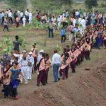 India, milioni di alberi piantati in 12 ore per salvare il pianeta