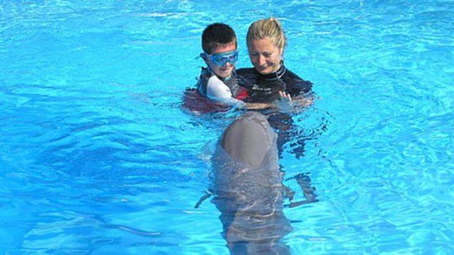 delfino bambino