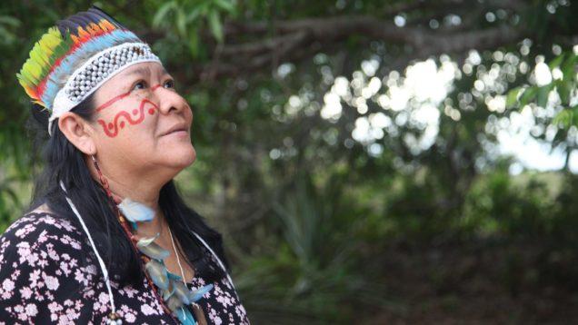 deputata indigena