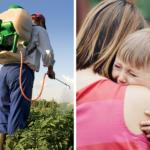 Pesticidi, danni irreversibili al cervello dei bambini: in Italia il clorpirifos è ancora autorizzato
