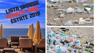 plastic free spiagge