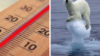 caldo da record alaska