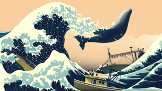 giappone caccia alle balene 10