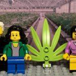 Lego dice addio alla plastica: i mattoncini saranno realizzati in bioplastica di canapa
